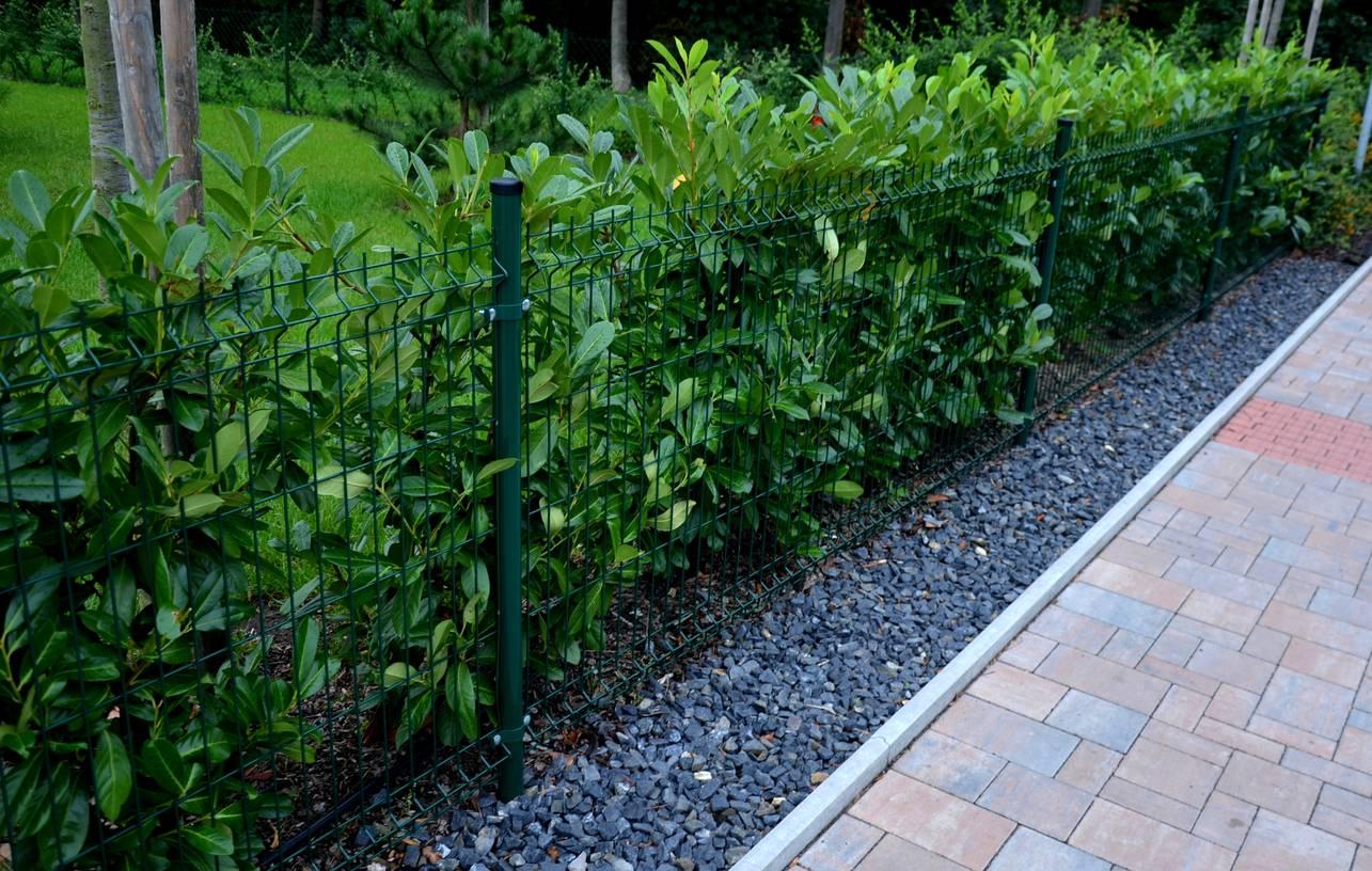 clôture jardin décoration